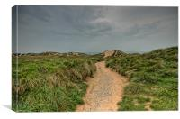 Freshwater West, Canvas Print