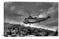 Sea King Helicopter, Canvas Print