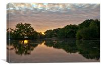 Epping Forest Sunrise, Canvas Print