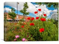 Poppy Flowers at Norwich Station, Canvas Print