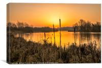 New day Norfolk Broads, Canvas Print