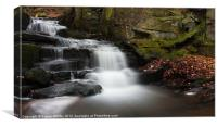 Lumsdale Waterfall, Canvas Print