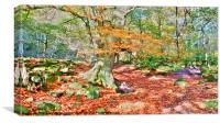 Padley Gorge Derbyshire UK, Canvas Print