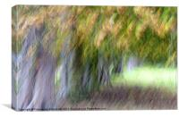 A touch of autumn, Canvas Print