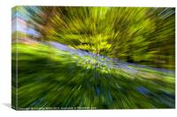 Quickly, Through the Bluebell Woods, Canvas Print