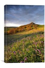 Roseberry, Canvas Print