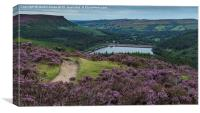 Ladybower in Bloom, Canvas Print