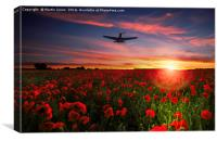 P40 Poppy Salute, Canvas Print