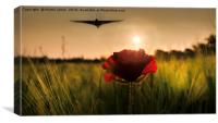 Vulcan Sunset for the Delta Lady, Canvas Print