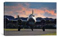 Sally B, Canvas Print