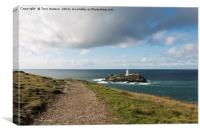 The Path to Godrevy, Canvas Print