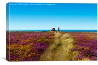 The Path To Wheal Coates (Version 3), Canvas Print
