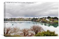 Restronguet Creek in Winter, Canvas Print