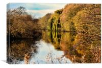 The River Aire at Kirkstall, Canvas Print