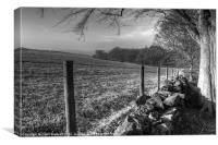 Chevin Dry Stone Wall #1 Mono, Canvas Print