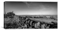 Dry Stone Walling in Mono, Canvas Print
