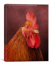 Red Rooster, Canvas Print
