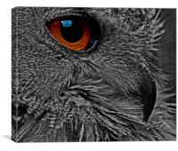 ORANGE EYE 2, Canvas Print