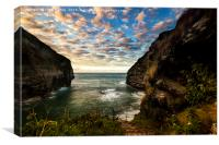 Bossiney, Canvas Print