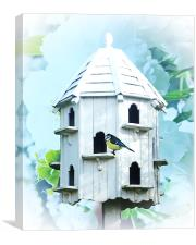 Bird House, Canvas Print