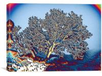 Tree in a Snowball, Canvas Print
