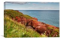 Cliffs of Arbroath , Canvas Print