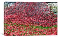 Tower of London Poppy Display , Canvas Print