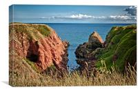 Rocky Cliffs of Arbroath , Canvas Print