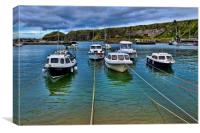 Stonehaven Harbour , Canvas Print