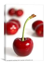 Red Cherries, Canvas Print