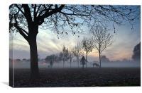 Misty afternoon in the park, Canvas Print