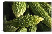cuccumber with bumps, Canvas Print