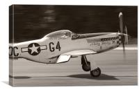 P51 - NOOKY BOOKY IV, Canvas Print