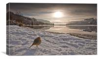Llwyn Onn winter landscape, Canvas Print