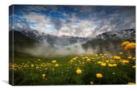 Alpine summer landscape, Canvas Print