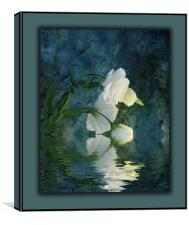 A Passion For Flowers, Canvas Print