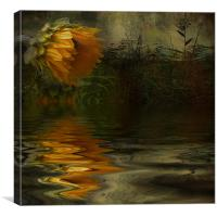 Summer Nights, Canvas Print