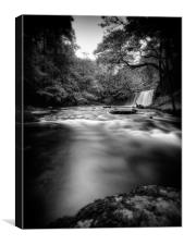 a moment flows by, Canvas Print