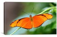 Flame Butterfly, Canvas Print
