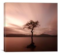 Milarrochy Bay, Canvas Print