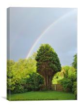 SOME WHERE  OVER THE RAINBOW, Canvas Print