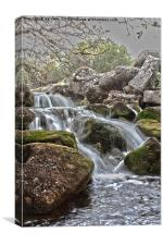 Moorland stream, Canvas Print