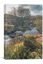 Black Tor Waterfall, Canvas Print