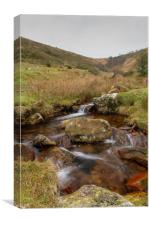Dartmoor Stream, Canvas Print