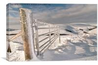 Frozen Gate, Canvas Print