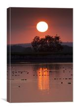 Glowing sunset, Canvas Print