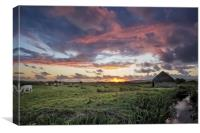 Braunton Marsh, North Devon, Canvas Print