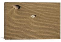 Sand and Stones, Canvas Print