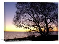 Sunset at Lomma, Sweden, Canvas Print