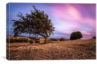 Sunset across the shire, Canvas Print